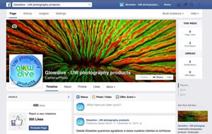 facebook glowdive